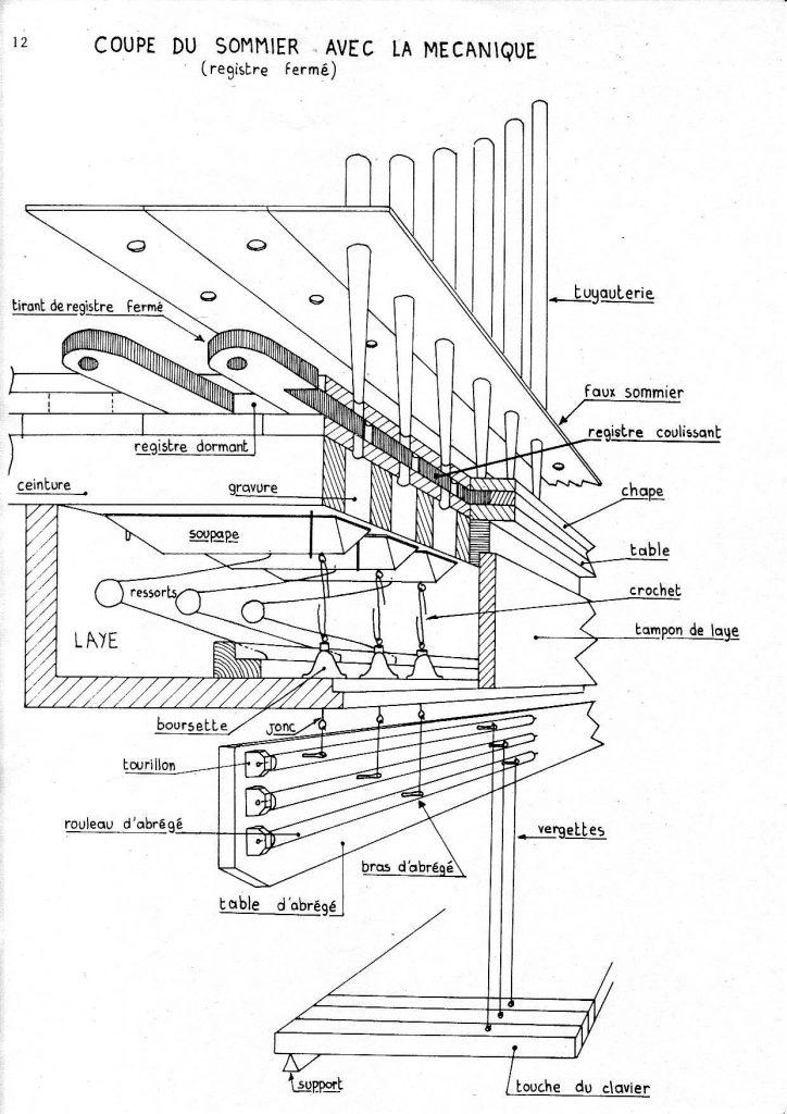 croquis-orgue